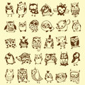 Owl doodle collection Foto de archivo