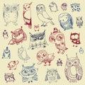 Owl doodle collection disegnato a mano vettore Immagini Stock Libere da Diritti