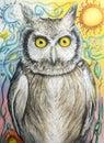 Sova kreslenie v farba ceruzka mesiac a slnko