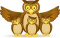 Owl family Stock Photos