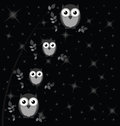 Owl family against a starry black night sky Royalty Free Stock Photos