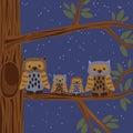 Owl family sull albero Fotografia Stock Libera da Diritti