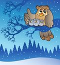 Owl family in winter Royalty Free Stock Photo