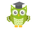 Owl in glasses with square academic cap icon, flat, cartoon style. Isolated on white background. Vector illustration. Royalty Free Stock Photo