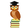 Owl graduate in cap sitting on a pile of books