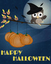 Owl Happy Halloween Royalty Free Stock Images