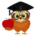 Owl holding an Apple Royalty Free Stock Photo