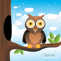 Owl illustration  Royalty Free Stock Photo