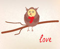 Owl love valentine card funny Royalty Free Stock Images
