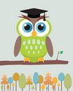 Owl with mortar board hat. Stock Photo