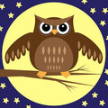 Owl at Night Royalty Free Stock Image