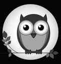 Owl at night sat on a branch with moon behind Royalty Free Stock Photos