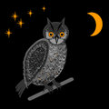 An owl in the nighttime vector art illustration Royalty Free Stock Images