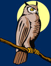 Owl perched on a branch Stock Images