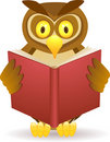 Owl reading a book Stock Photography