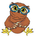 Owl in round glasses