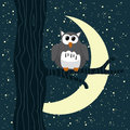 Owl sitting on a tree in starry night Royalty Free Stock Photography