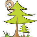 Owl sitting on tree vector illustration isolated white background Royalty Free Stock Photo