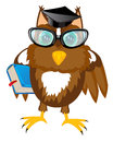 Owl teacher with book Royalty Free Stock Photo