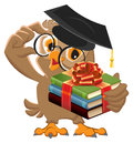 Owl teacher holding gift book. Book is best gift Royalty Free Stock Photo
