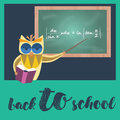 Owl teacher holding pointer and book at blackboard Royalty Free Stock Photo