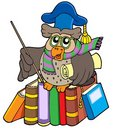 Owl teacher with parchment and books Royalty Free Stock Photography