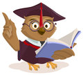 Owl teacher reading book Royalty Free Stock Photo