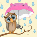 Owl with umbrella greeting card Royalty Free Stock Photo
