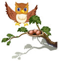 An owl watching the eggs at the branch of a tree illustration on white background Royalty Free Stock Image
