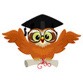 Owl wearing graduation cap and holding diploma while flying