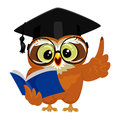 Owl wearing graduation cap while reading book