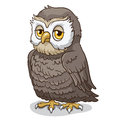 Owl wise cartoon vector illustration Stock Images