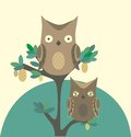 Owls Royalty Free Stock Images