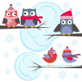 Owls and birds in winter forest Stock Photography