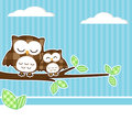 Owls on branch Royalty Free Stock Images