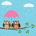 Owls couple under umbrella Royalty Free Stock Photos