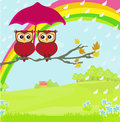 Owls couple under umbrella autumn rainy day Stock Image