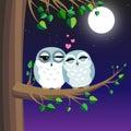 Owls Love