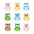 Owls set colored on white background Royalty Free Stock Images