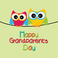 Owls two with happy grandparents day text on light green background Royalty Free Stock Photography