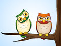 Owls two sitting on a branch Royalty Free Stock Images