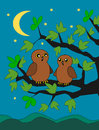 Owls two sitting on a branch in the moonlight Stock Photo