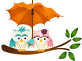 Owls under umbrella scalable vectorial image representing a isolated on white Royalty Free Stock Image