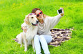 Owner woman with golden retriever dog taking selfie portrait on the smartphone in summer day Royalty Free Stock Images