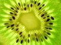 Owoce kiwi Zdjęcia Royalty Free