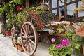 Ox Cart with Flowers Stock Image