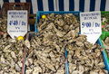 The oyster market brittany cancale centre for oyster farming in france Stock Photos