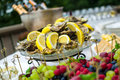 Oysters on ice at buffet table, catering Royalty Free Stock Photo