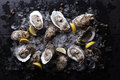 Oysters with ice and lemon Royalty Free Stock Photo