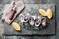 Oysters and lemon Royalty Free Stock Photo